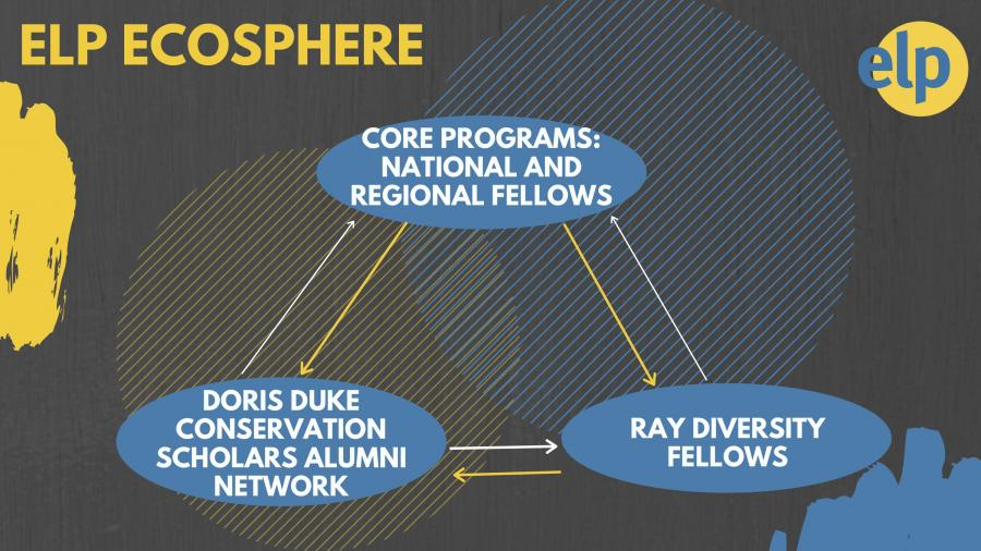 ELP Ecosphere Graphic